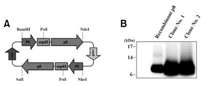 Figure F4