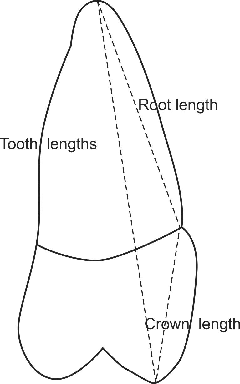Figure F1