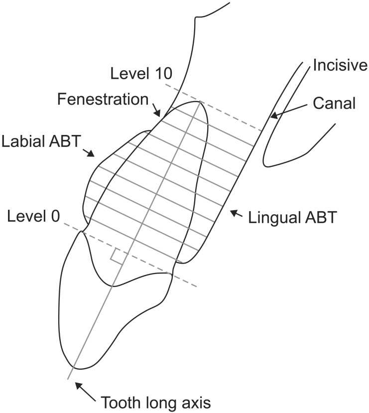 Figure F3